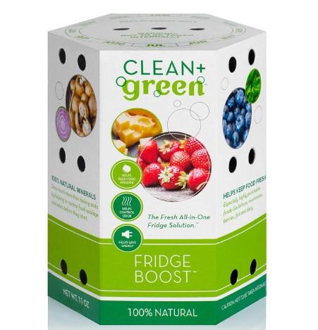 Clean Green Fridge