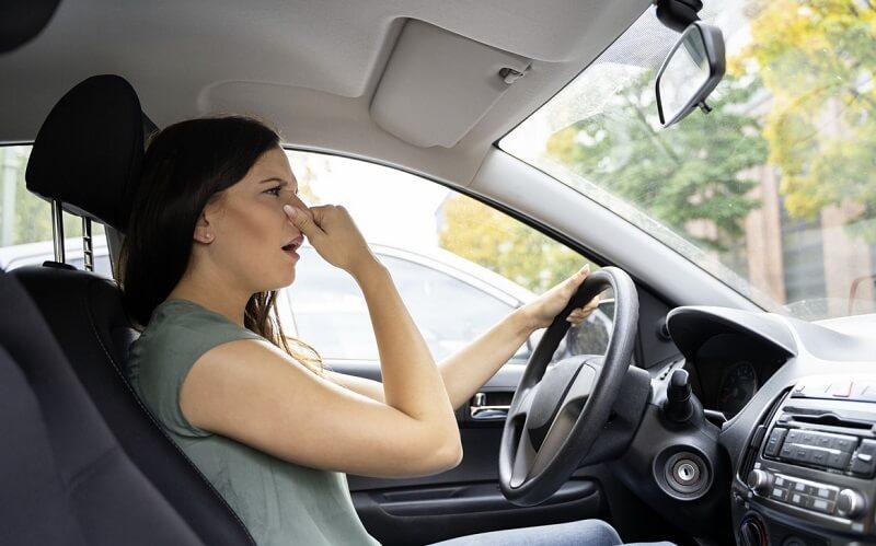 car odors