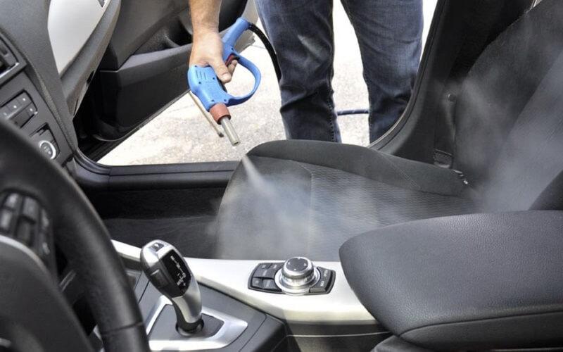 mold in car