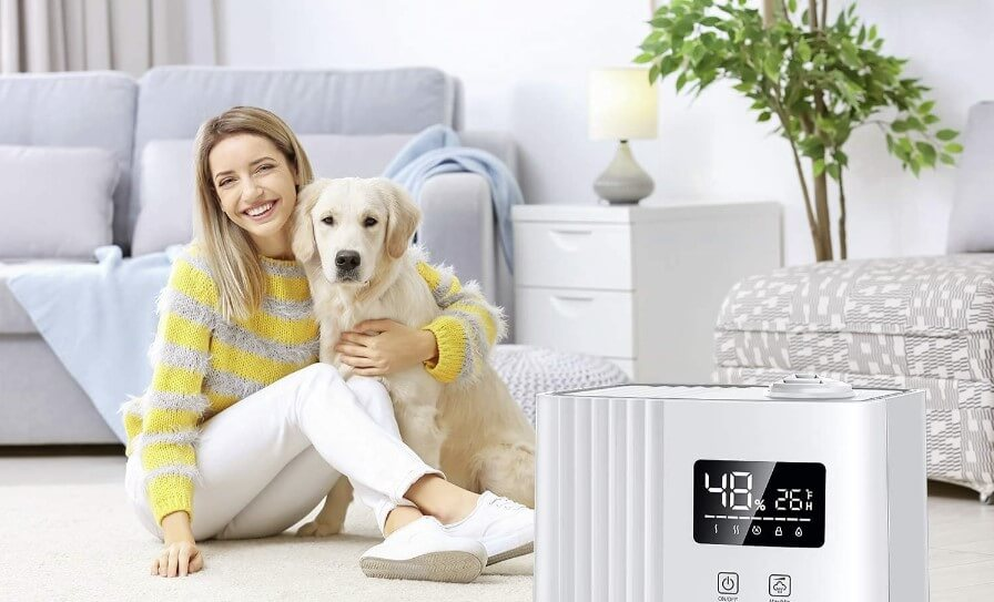 Humidifiers dogs